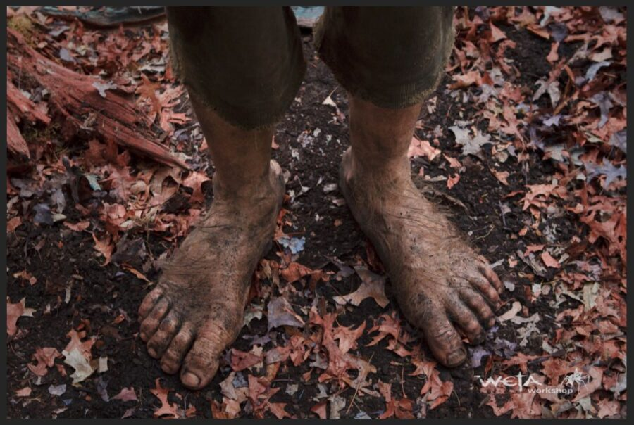 Why Don't Hobbits Wear Shoes?